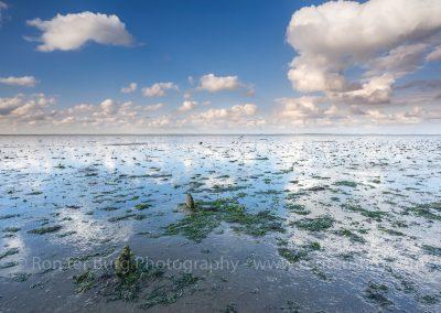 Waddenzee bij Moddergat